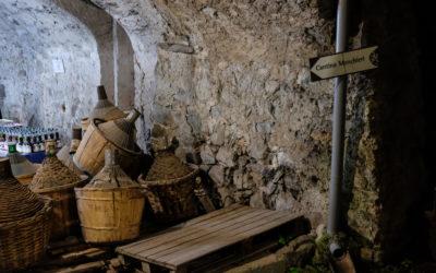 Il vino di Valle Camonica, un territorio nel bicchiere