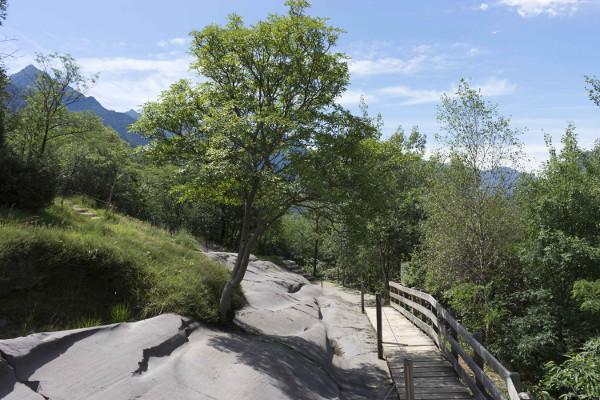 Scoprire la Valle Camonica attraverso i suoi parchi e le incisioni rupestri – 1 (a Capo di Ponte)